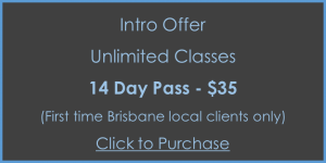 14 day unlimited pass